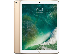 iPad Pro 12.9 Wi-Fi + Cellular de 512 GB, Plata