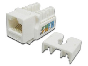 Conector Jack SAXXON RJ-45 Cat6e UTP, Color Blanco.
