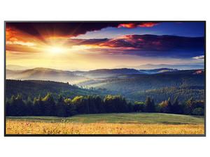 "Monitor LED Samsung Premium Display QMR Series de 49\"", Resolución 3840 x 2160 (Ultra HD 4K), 8 ms."