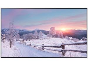 "Monitor LED Samsung QB65R de 5\"", Resolución 3840 x 2160 (Ultra HD 4K), 8 ms."