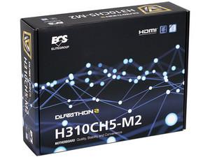 H310CH5-M2