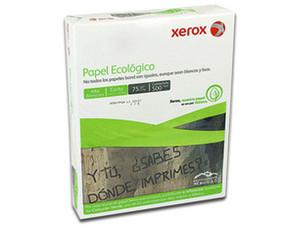 XECPAPAE051